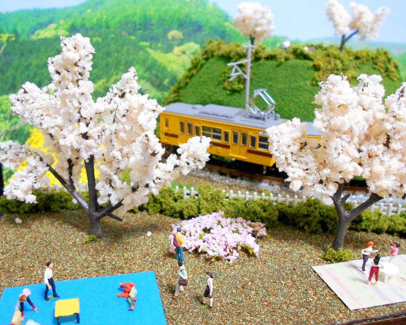 単モジ・コーナー桜2-1616