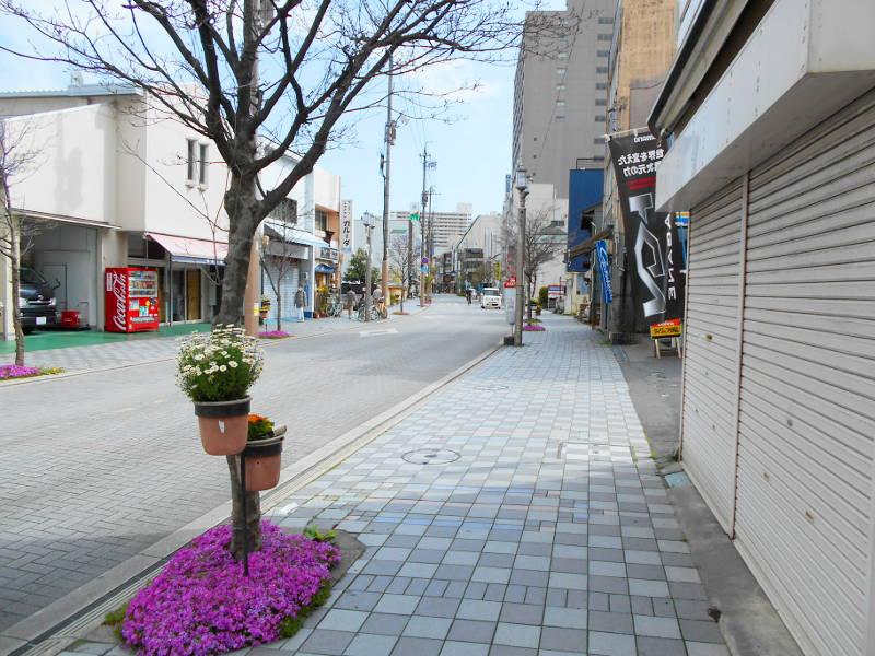 浜松・遠州鉄道2015その4・浜松城-4522
