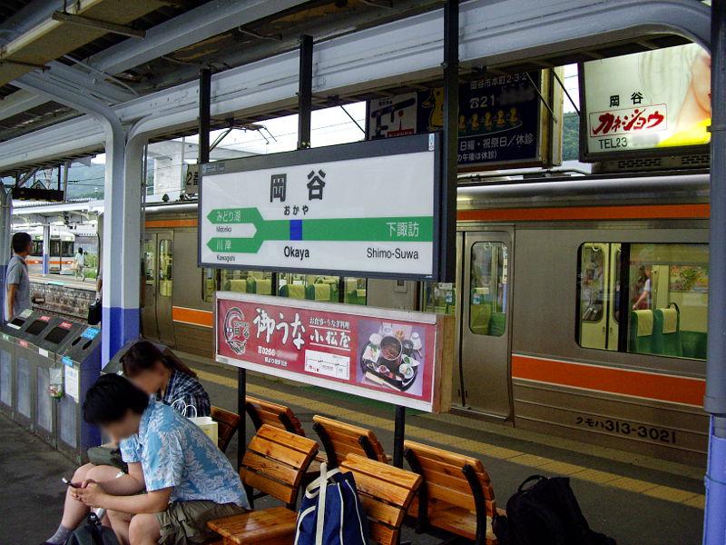 南アルプス縦断・飯田線完全乗車2014その2-416