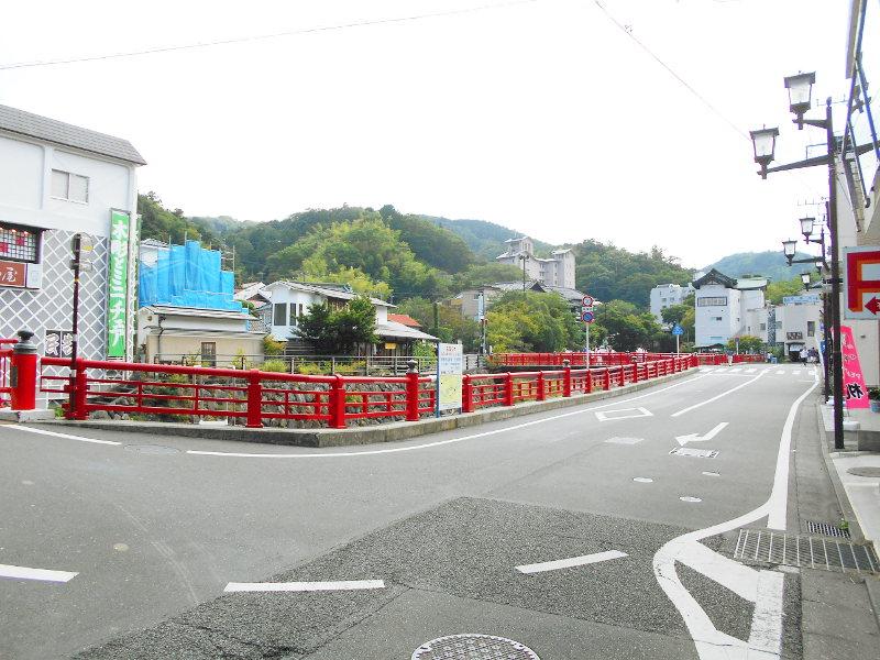 伊豆のフェリー旅2016・踊り子号で修善寺へ-7124