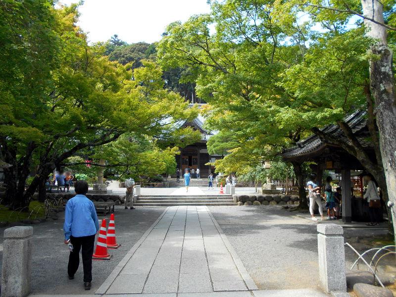 伊豆のフェリー旅2016-7126