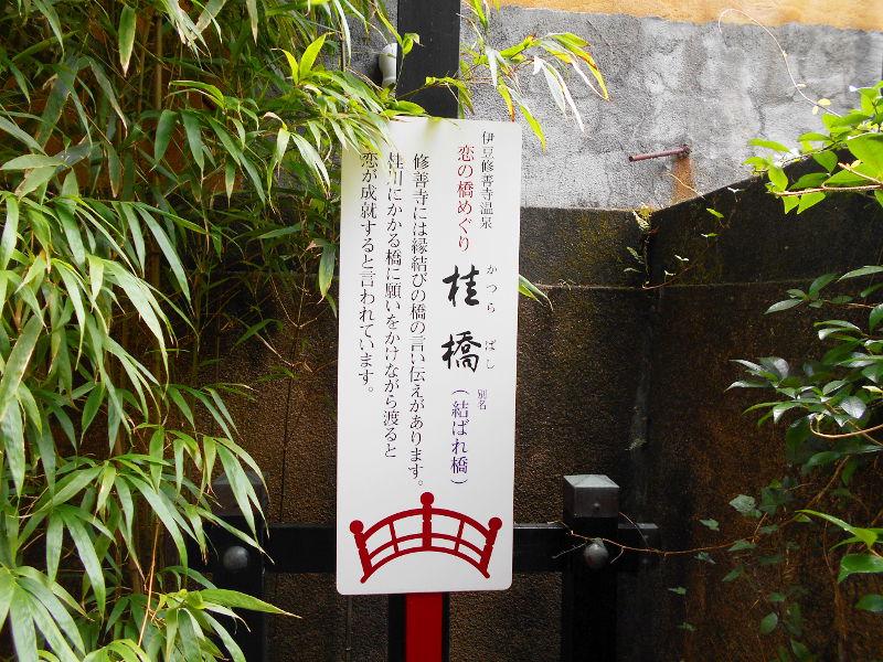 伊豆のフェリー旅2016・踊り子号で修善寺へ-7131