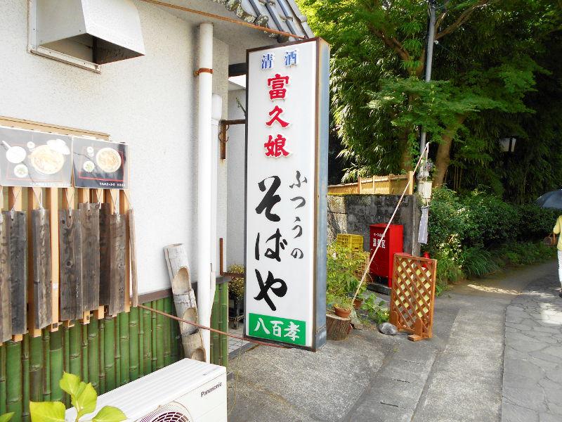 伊豆のフェリー旅2016・踊り子号で修善寺へ-7135