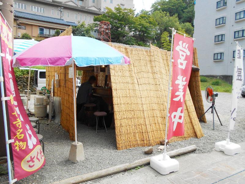 伊豆のフェリー旅2016-7201