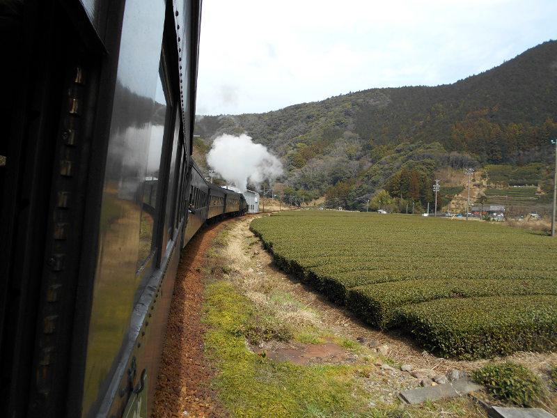 静岡・大井川鐵道のSL・車窓の風景2016-1410