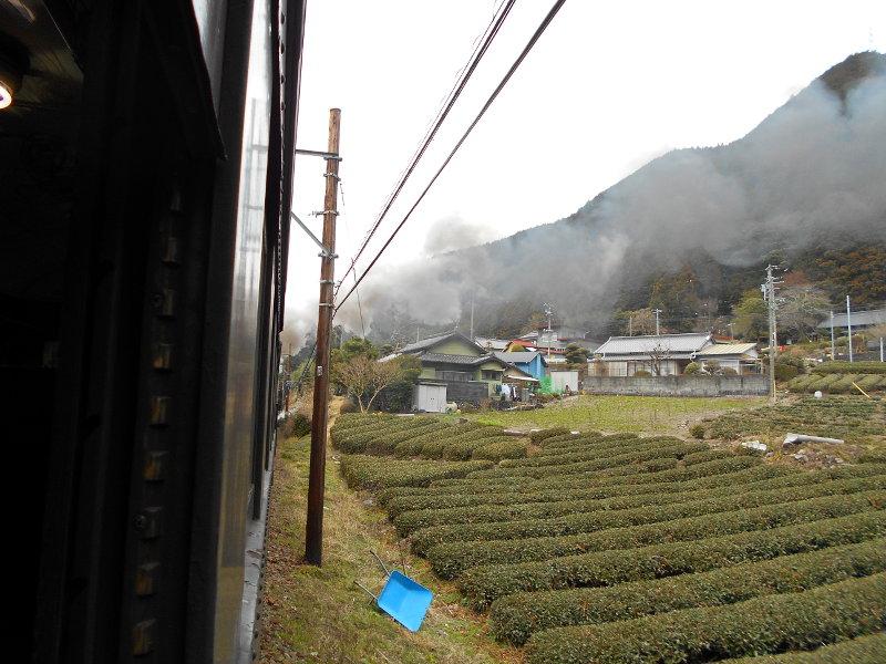 静岡・大井川鐵道のSL・車窓の風景2016-1423