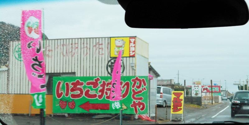静岡・清水の東海大学海洋科学博物館-6108