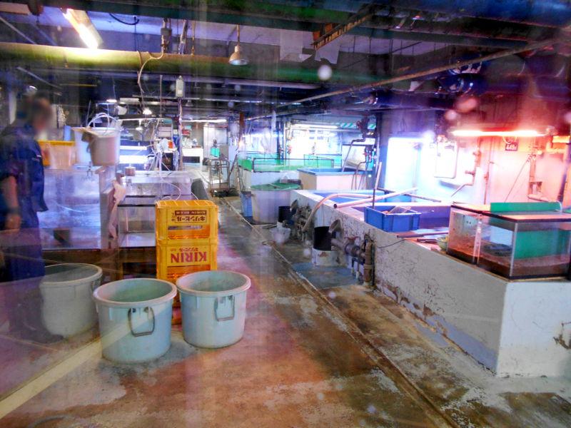 静岡・清水の東海大学海洋科学博物館-6132