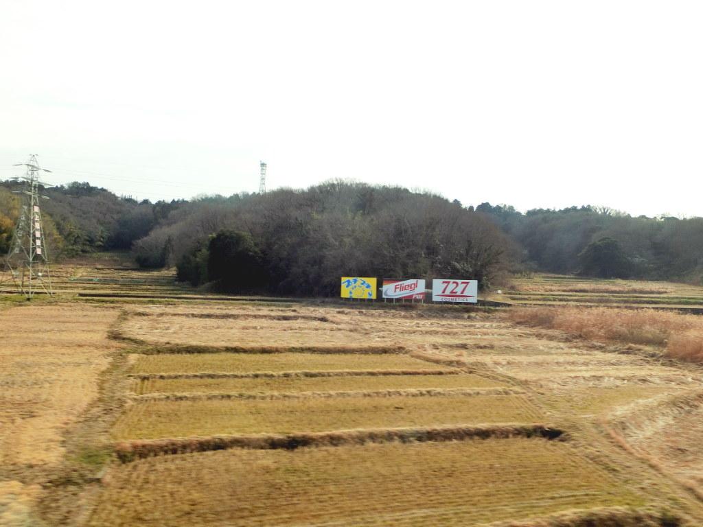 静岡で新年会2019・日本平の絶景-1105