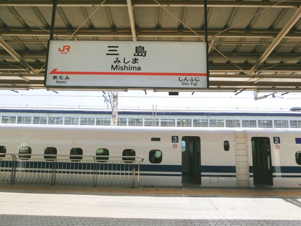 静岡で新年会2019・日本平の絶景-1106