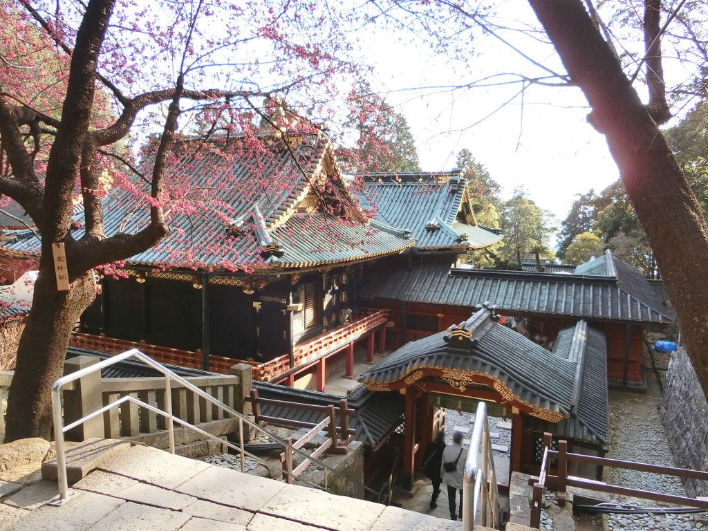 静岡で新年会2019・久能山東照宮-1227