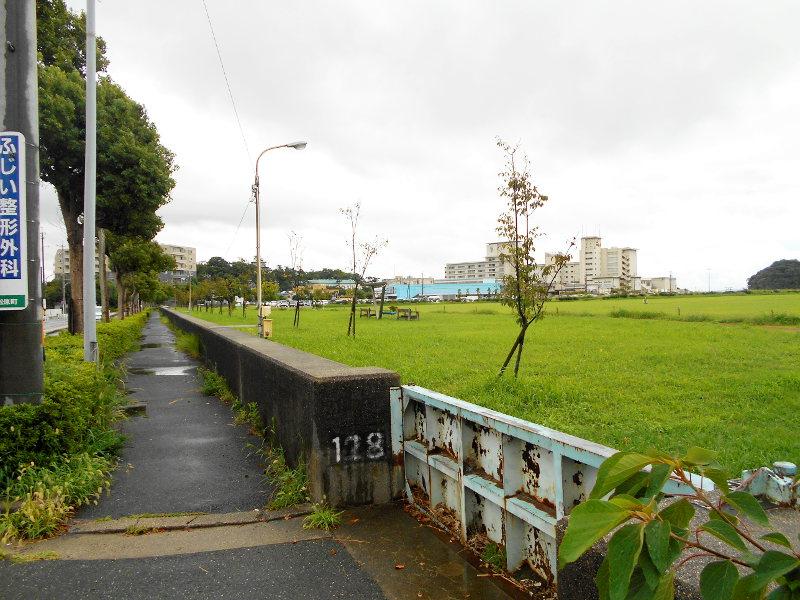 蒲郡・竹島水族館2016-6113