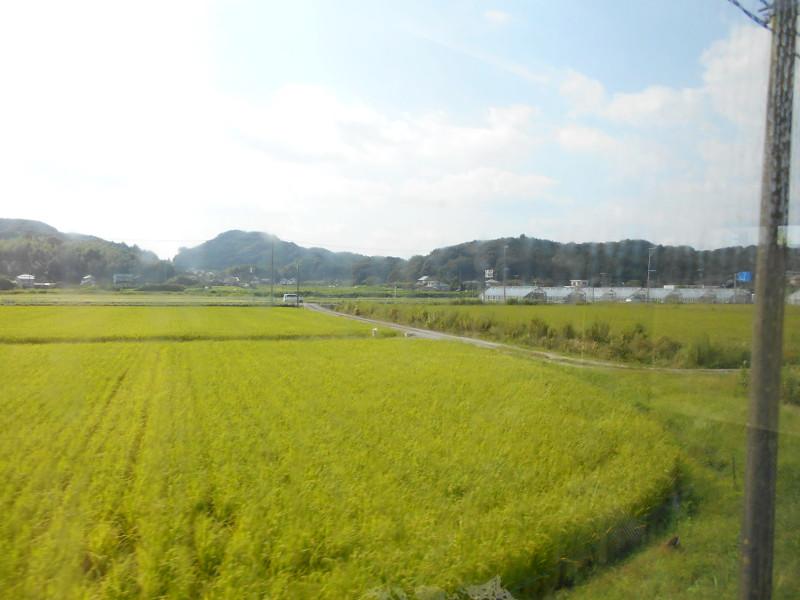 天竜浜名湖線2015その1-5115