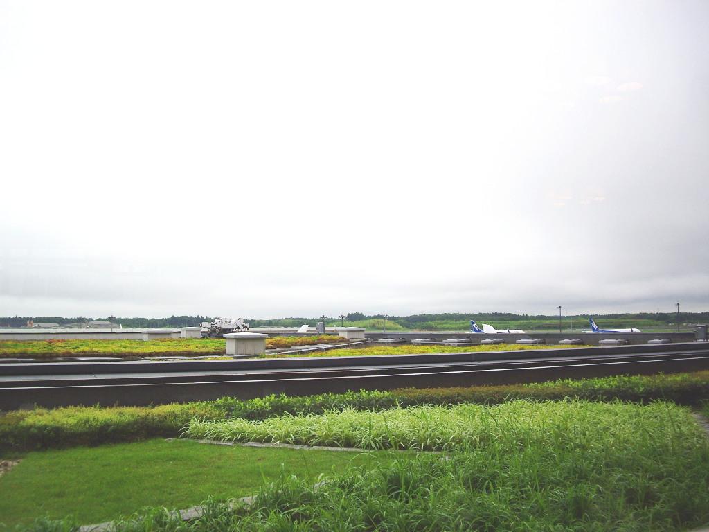 ユーラシア大陸鉄道横断旅行 Go West!1996その92・東京へ(最終回)-9203