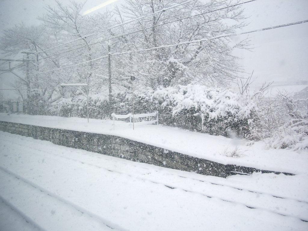 はるかなる北陸路・その1・青春18きっぷで東京から金沢へ2009冬-1119
