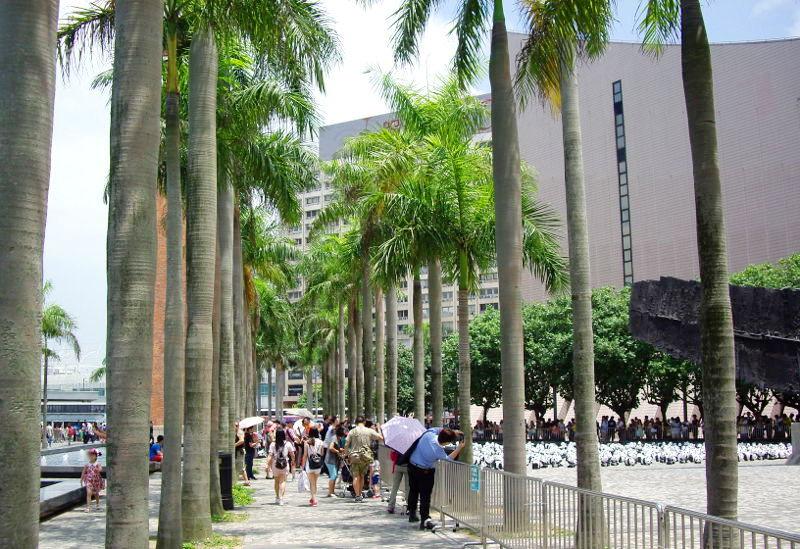 香港・小心地滑友の会 その10・香港のパンダ2014夏-1005