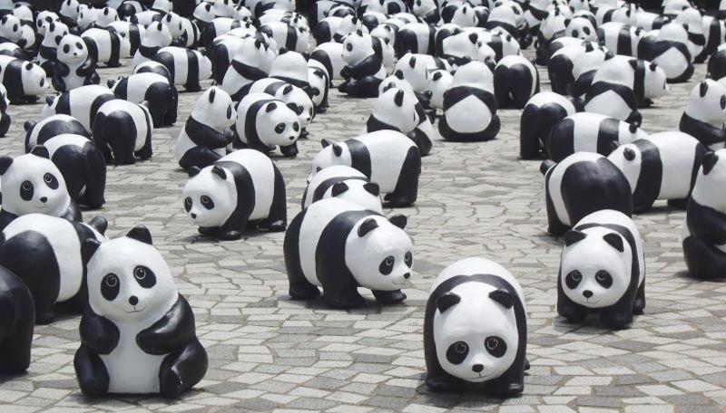 香港・小心地滑友の会 その10・香港のパンダ2014夏-1010