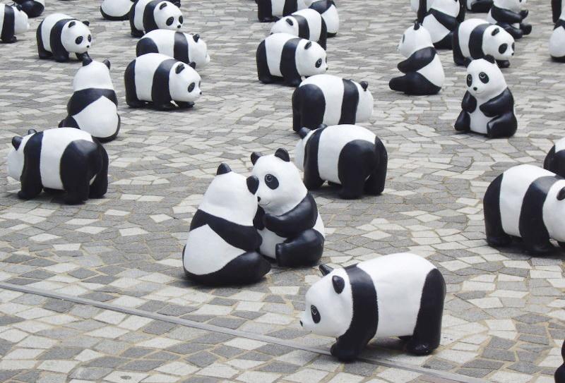 香港・小心地滑友の会 その10・香港のパンダ2014夏-1011