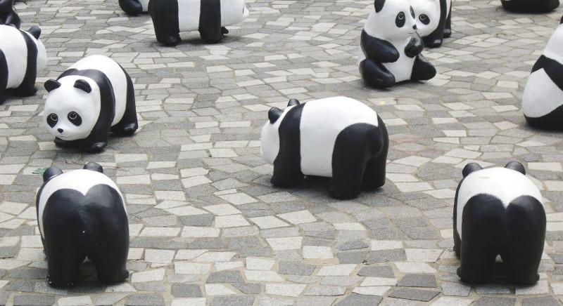香港・小心地滑友の会 その10・香港のパンダ2014夏-1012