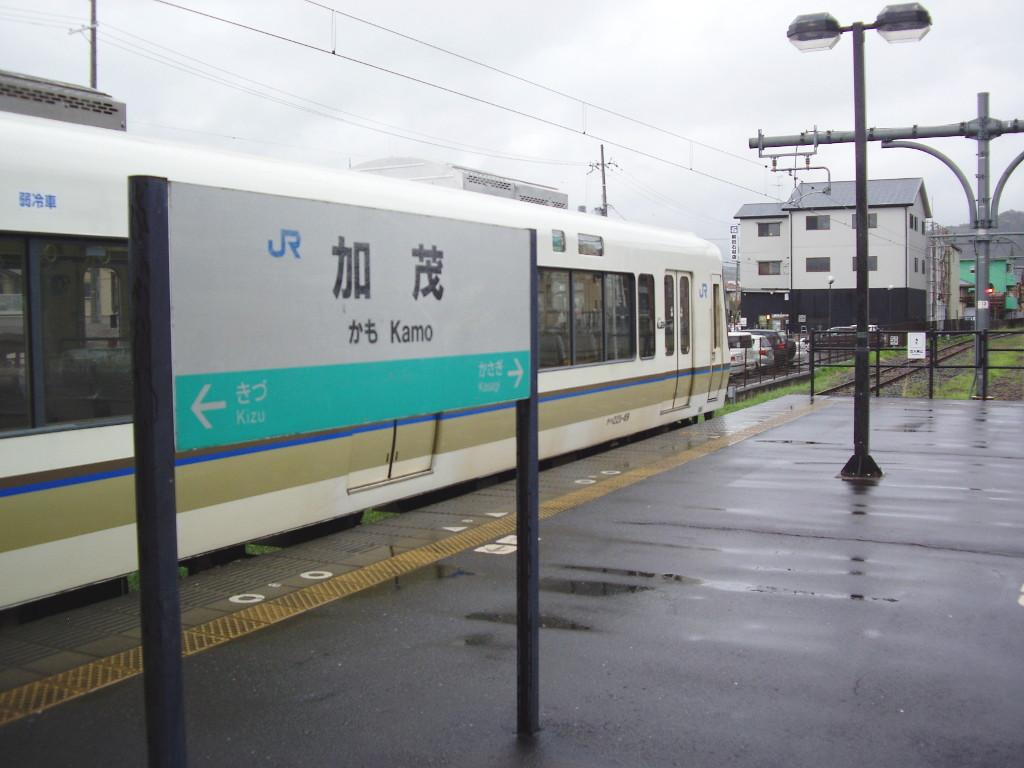 奈良・春の嵐と関西線2013その1-7105
