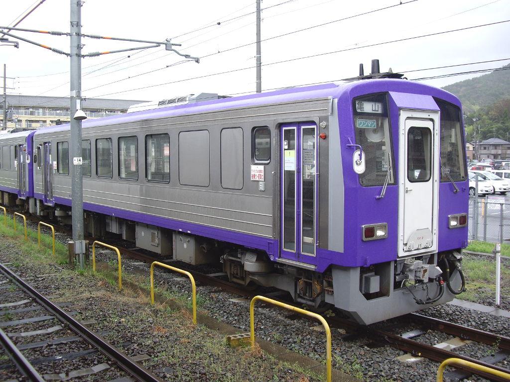 奈良・春の嵐と関西線2013その1-7111