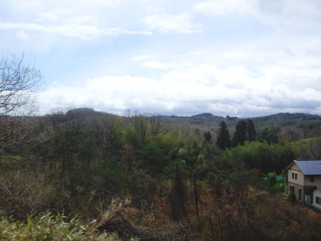 奈良・春の嵐と関西線2013その2-7207