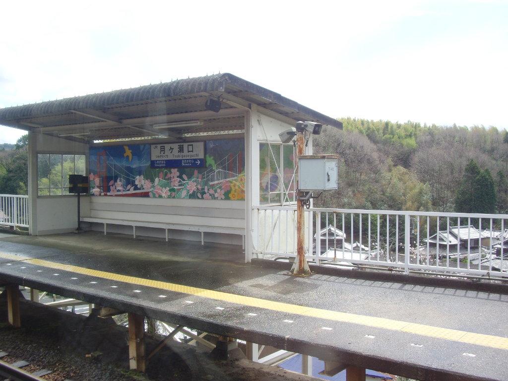 奈良・春の嵐と関西線2013その2-7208