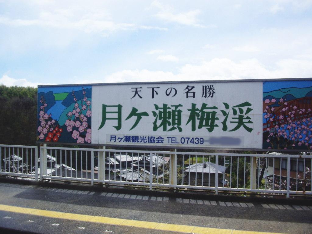 奈良・春の嵐と関西線2013その2-7209