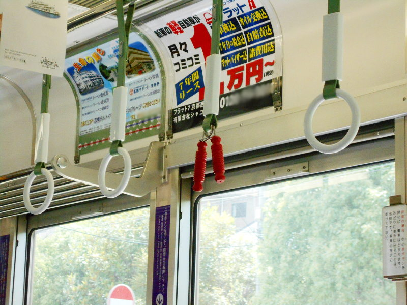 京都・嵐電に乗って龍安寺2017-2010
