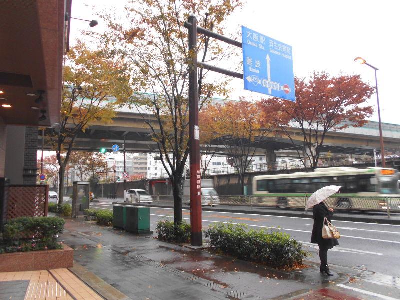 宝塚大劇場2017その1-1110