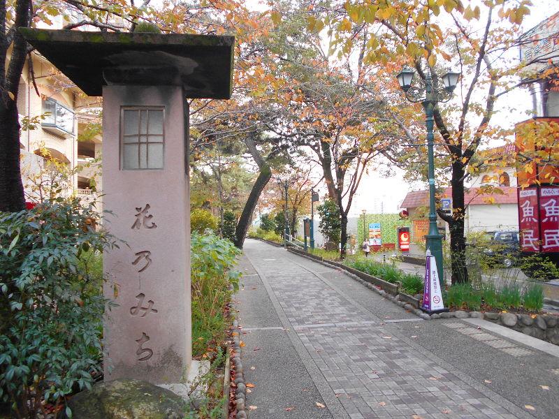 宝塚大劇場2017その2-1228