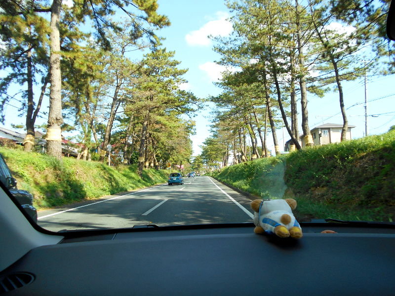箱根・芦ノ湖ドライブ2016秋その1・三島から箱根へ-4109