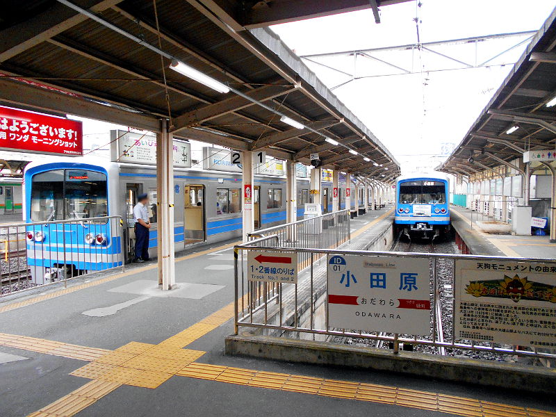 大雄山・ふじ丸2016-6102