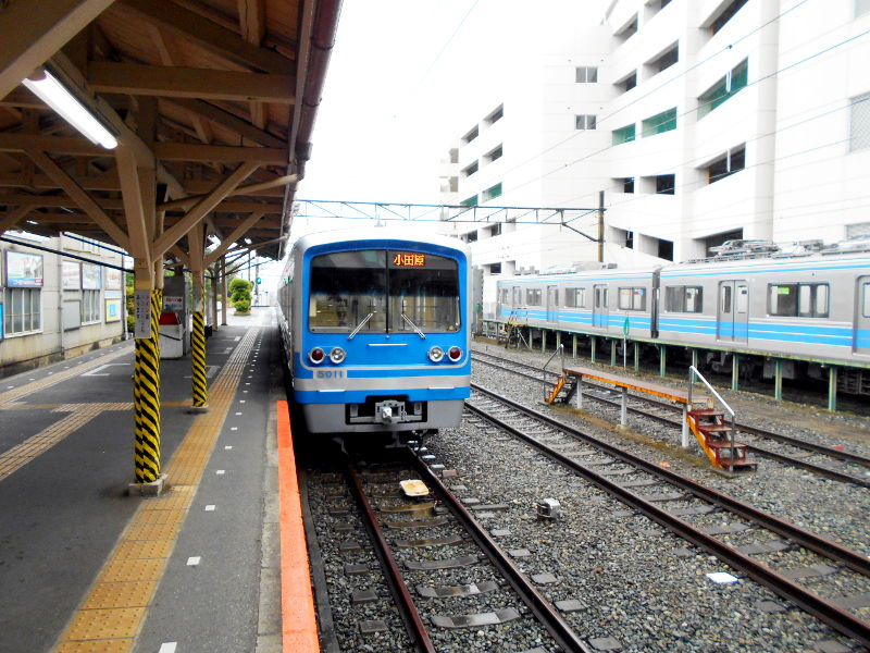 大雄山・ふじ丸2016-6111