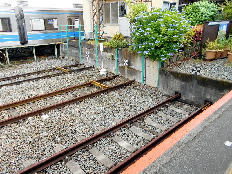 大雄山・ふじ丸2016-6112