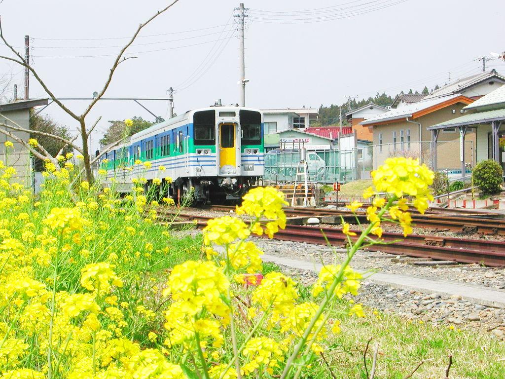 房総・菜の花と久留里線2007-4121