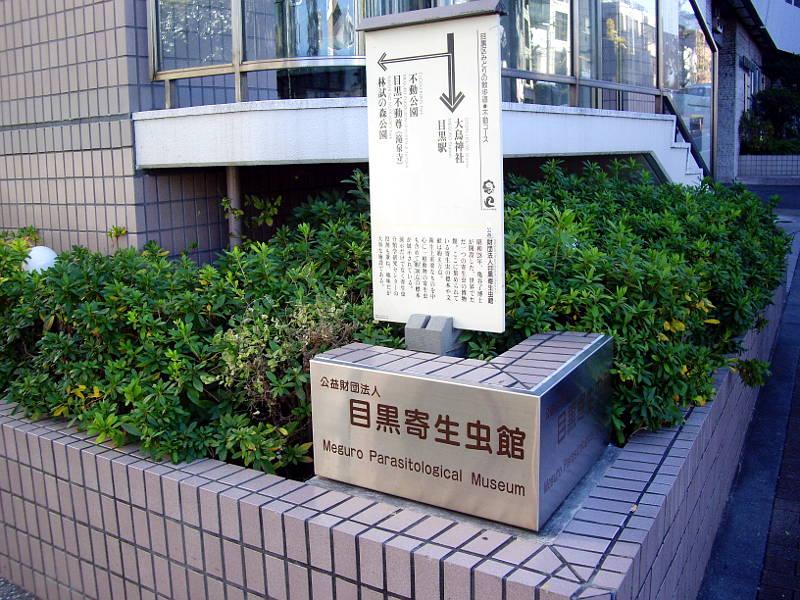 東京・目黒寄生虫館2013-801
