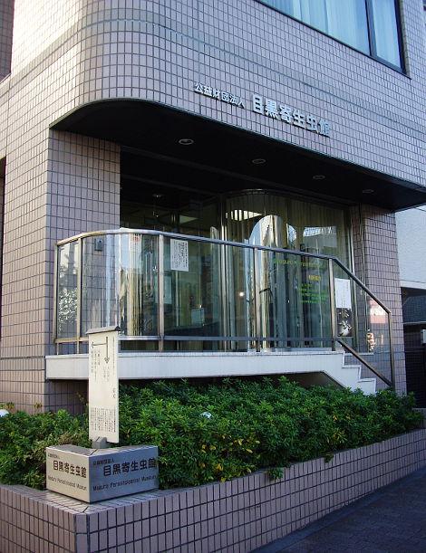 東京・目黒寄生虫館2013-802