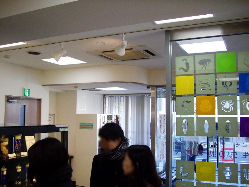 東京・目黒寄生虫館2013-803