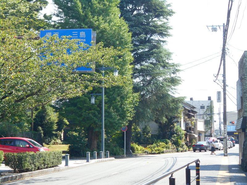 小田原城2017-3133