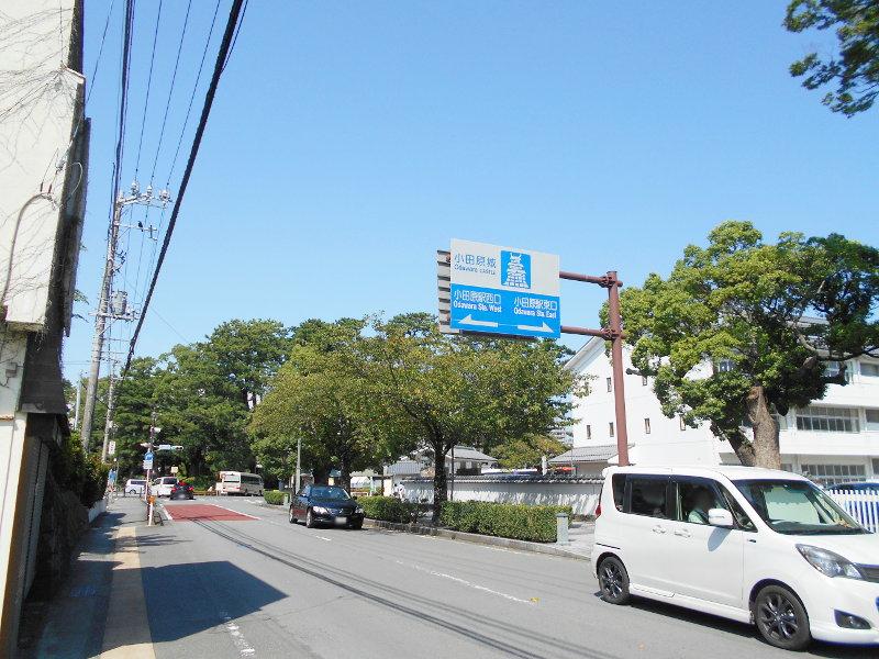 小田原城2017-3134