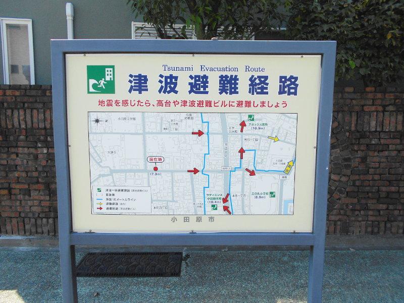 小田原・御幸の浜2017-3206