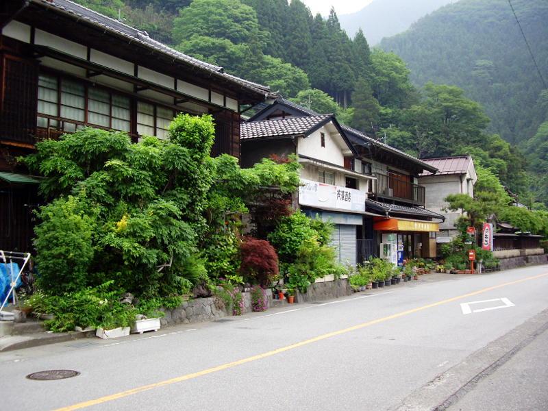 東京・青梅街道のはじっこ2011-6007