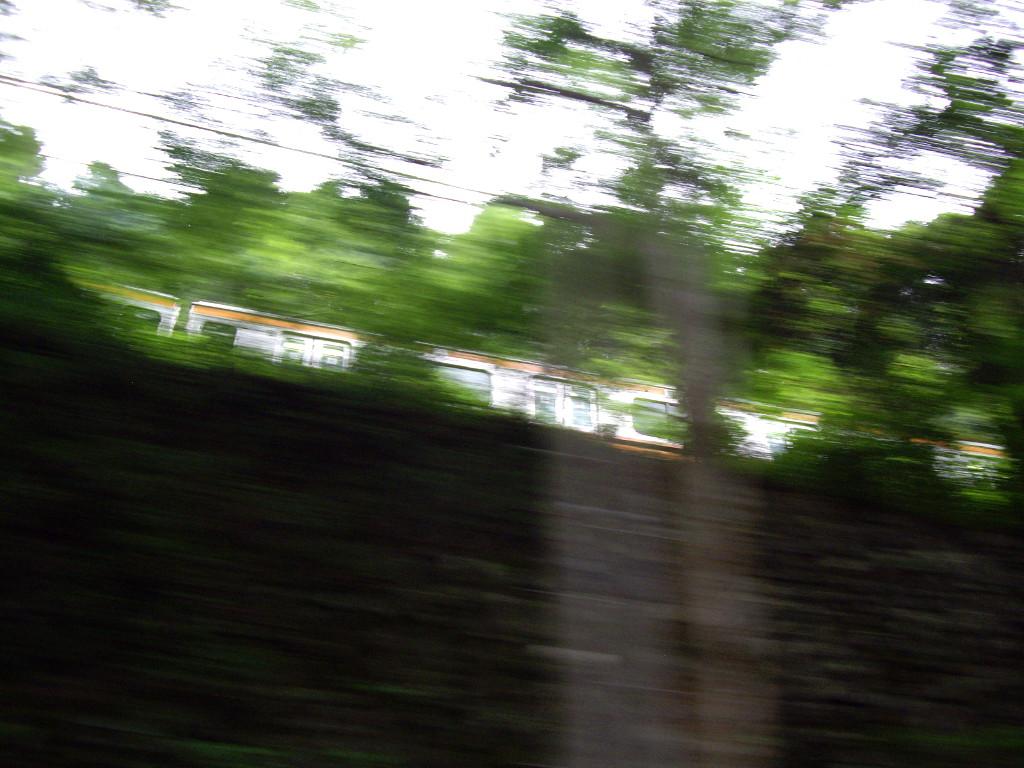 青梅線流し撮り2011-9801