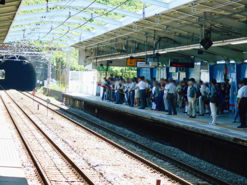 横浜Y156記念列車583系2015その1-5112