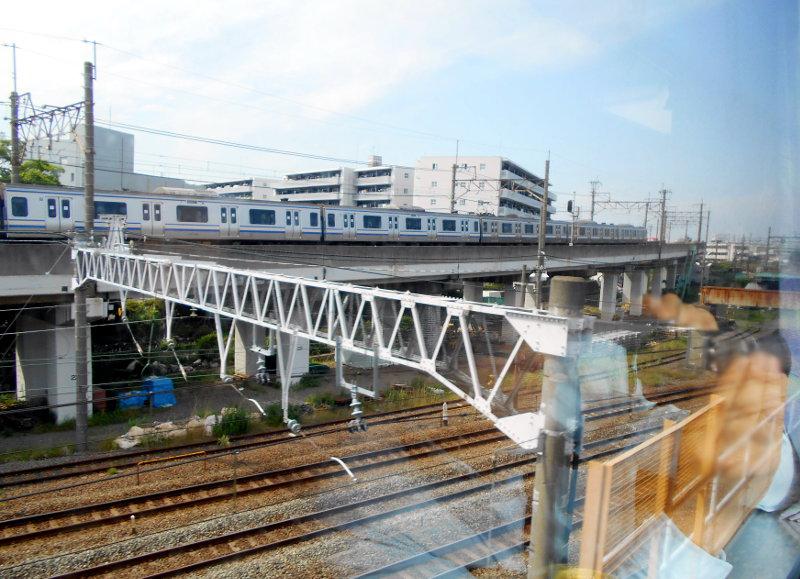 横浜Y156記念列車583系2015その3-5305