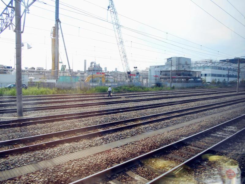 横浜Y156記念列車583系2015その3-5306