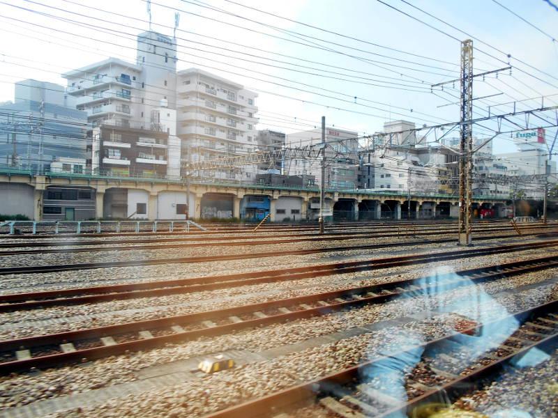 横浜Y156記念列車583系2015その3-5307