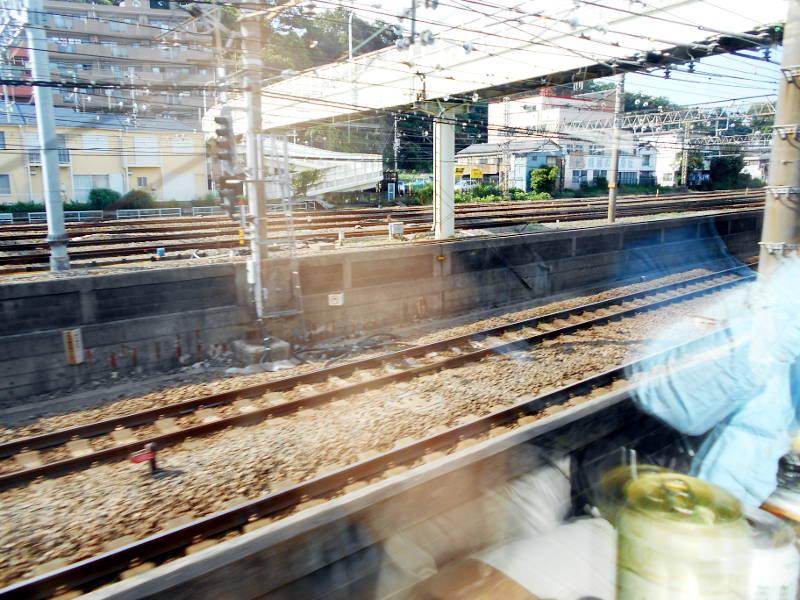 横浜Y156記念列車583系2015その3-5308