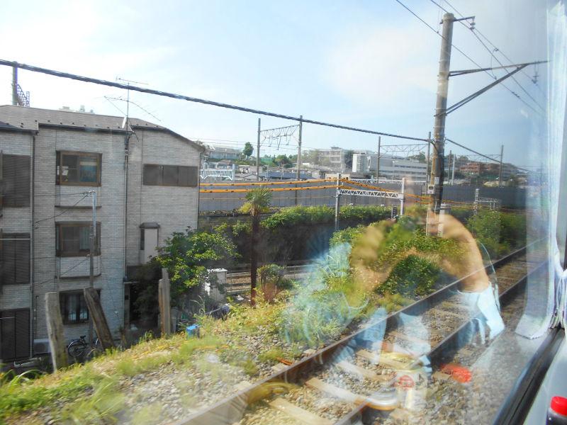 横浜Y156記念列車583系2015その3-5309